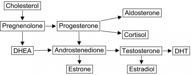 pregnenolone depression